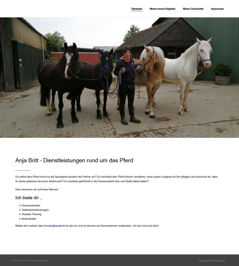 Startseite – Anja Britt – Dienstleistungen rund um das Pferd